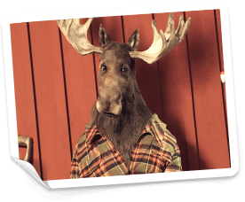 Casinostugan frontfigur Ture - en älg med stora horn och rutig skjorta
